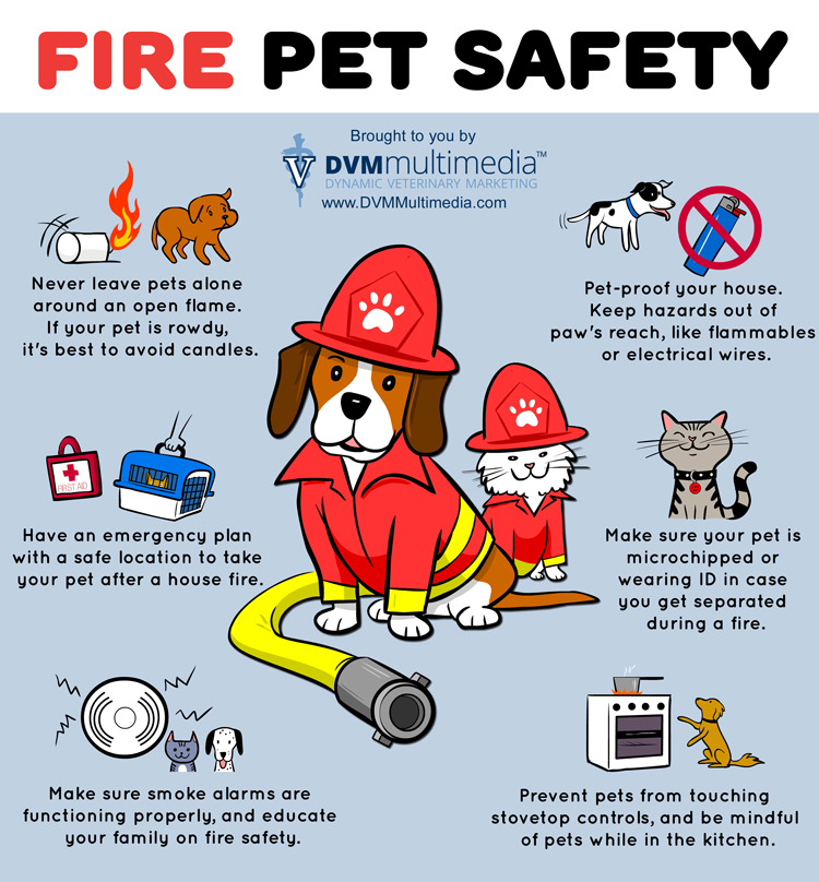fire-pet-safety